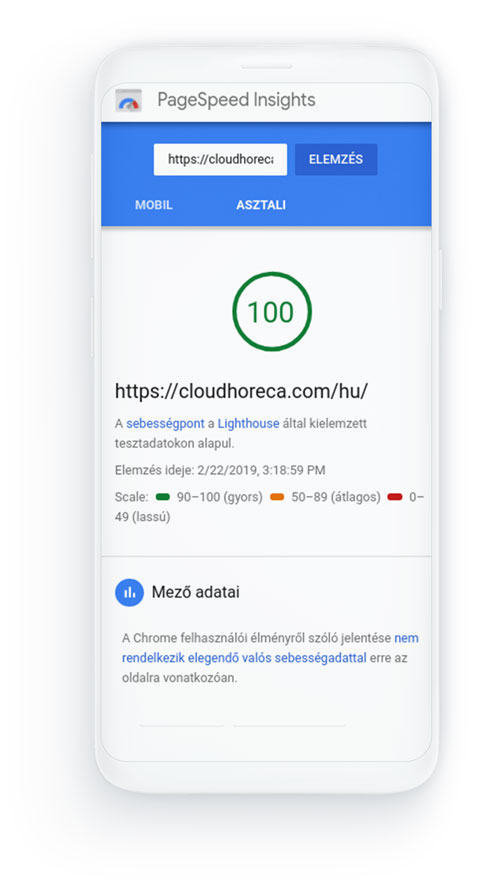 Pagespeed insights 100-as eredmény